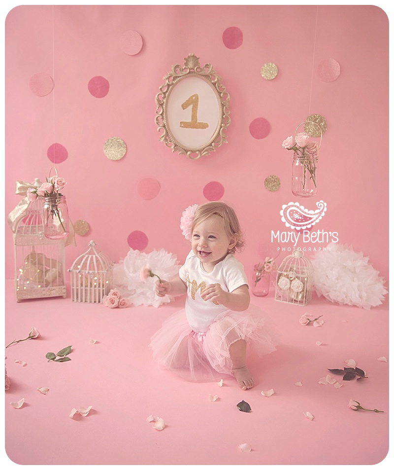 Birthday Party Ideas Augusta Ga: 1st Birthday Gold And Pink Cake Smash Session For Mary